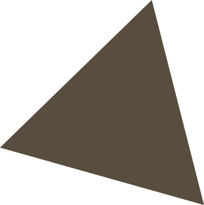 triangle marron 2
